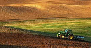 Ploughing Of Every Kind is Bad For Our Soil